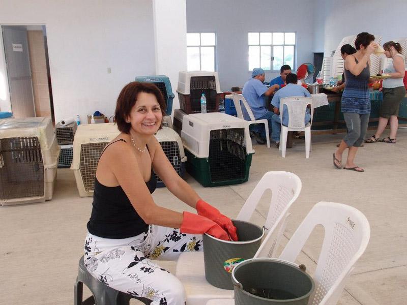 December 2012 Clinics