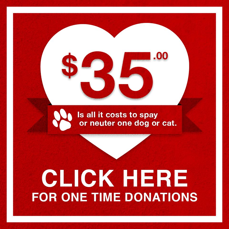 DonateAd